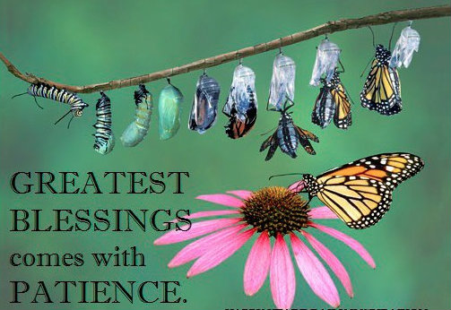 Greatest Blessings come with patience