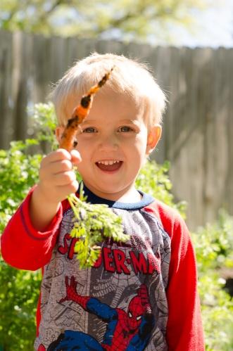 Turner harvesting carrots in the family's backyard garden