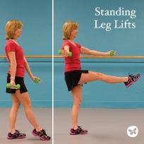 standing leg lifts