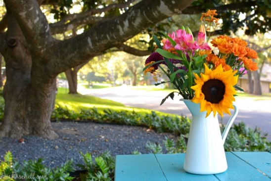 Fall-Flowers-TT-wm-e1411493511988
